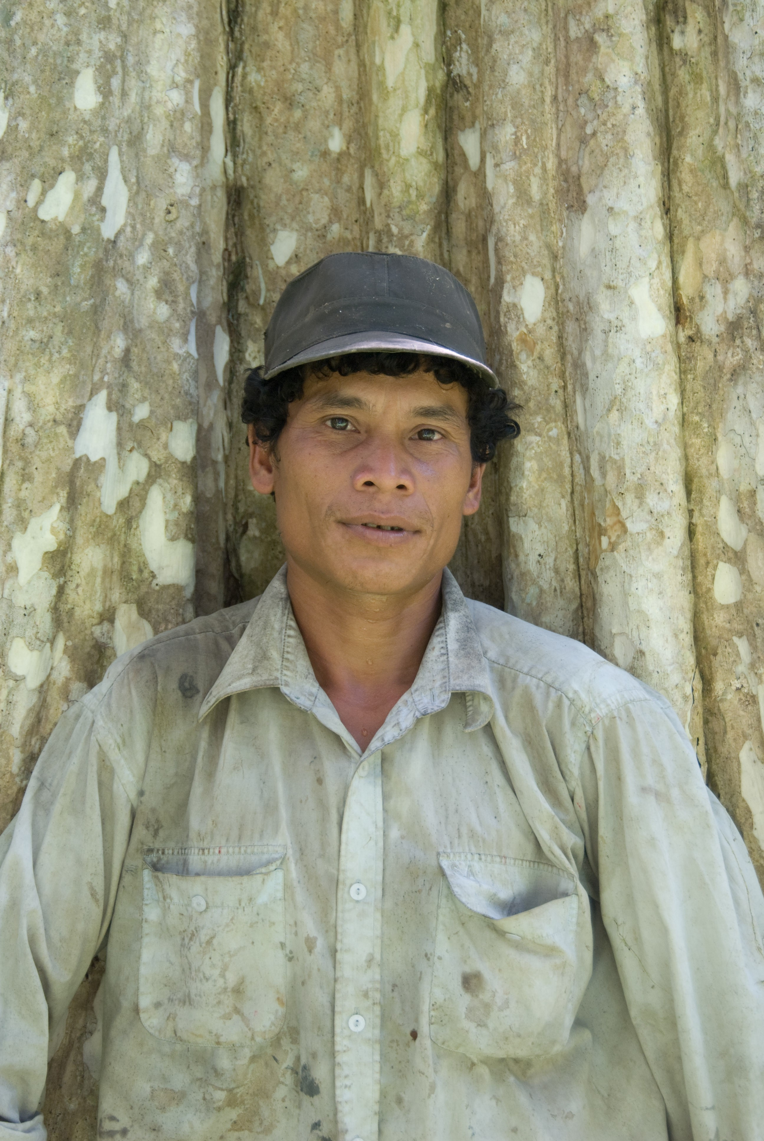 Image of Indigenous Kuy representative in front of large standing tree trunk