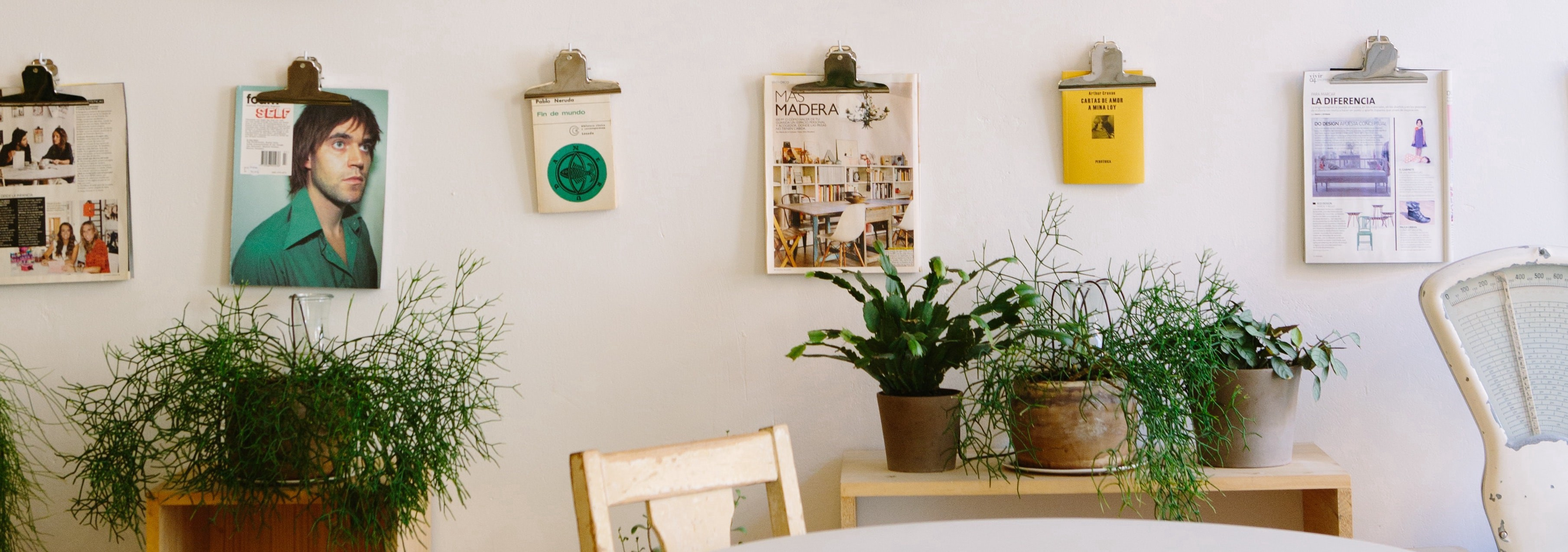 Wall with magazine prints and plants
