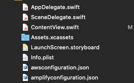A screenshot of Xcode showing all the files inside the Project now