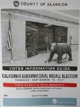 Voter Information Guide for the California Gubernatorial Recall Election