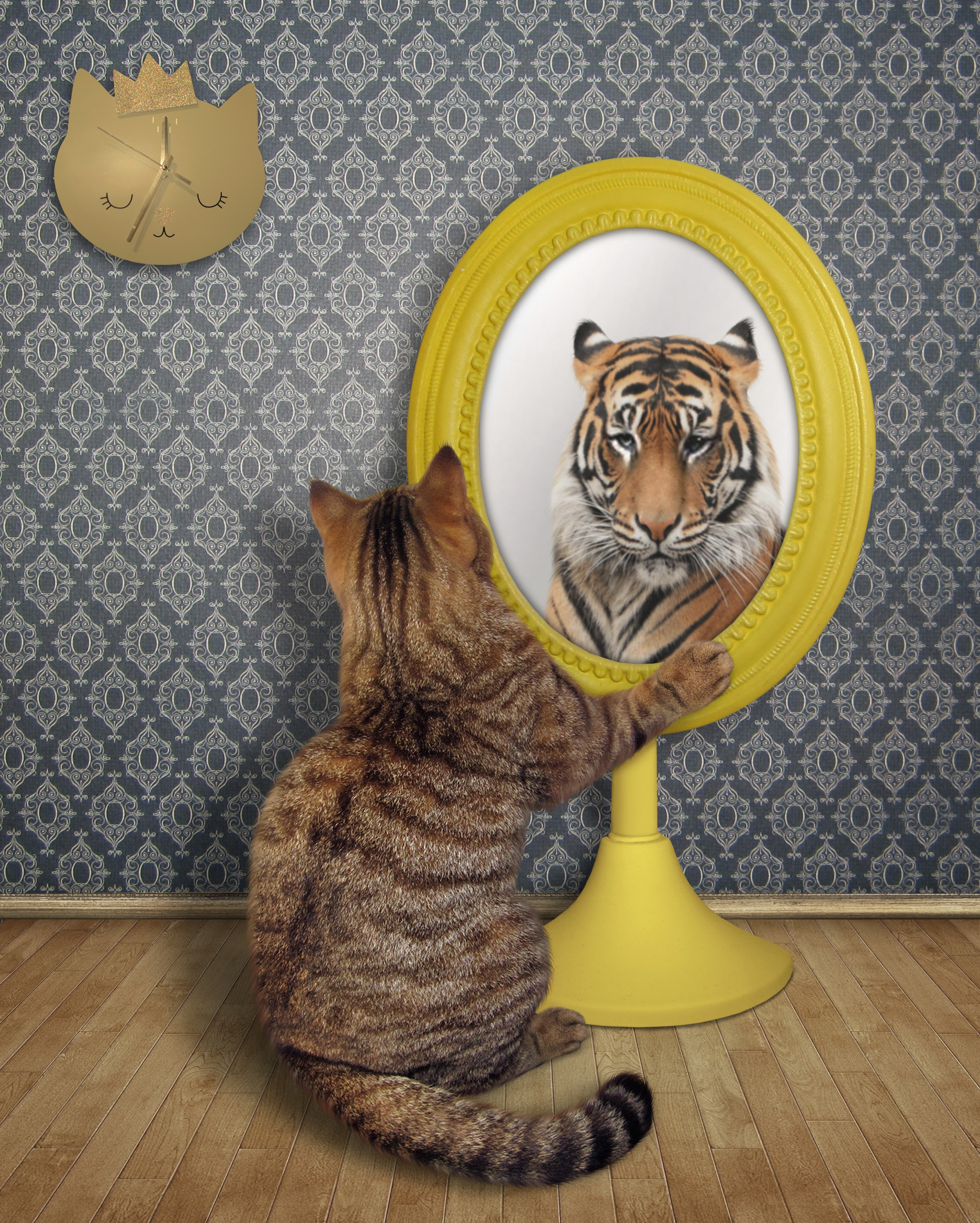Cat looking into a mirror, seeing a tiger back in the reflection