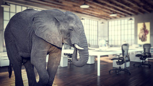 Elephant In Room That Needs To Be >> Graphql Caching The Elephant In The Room Apollo Graphql