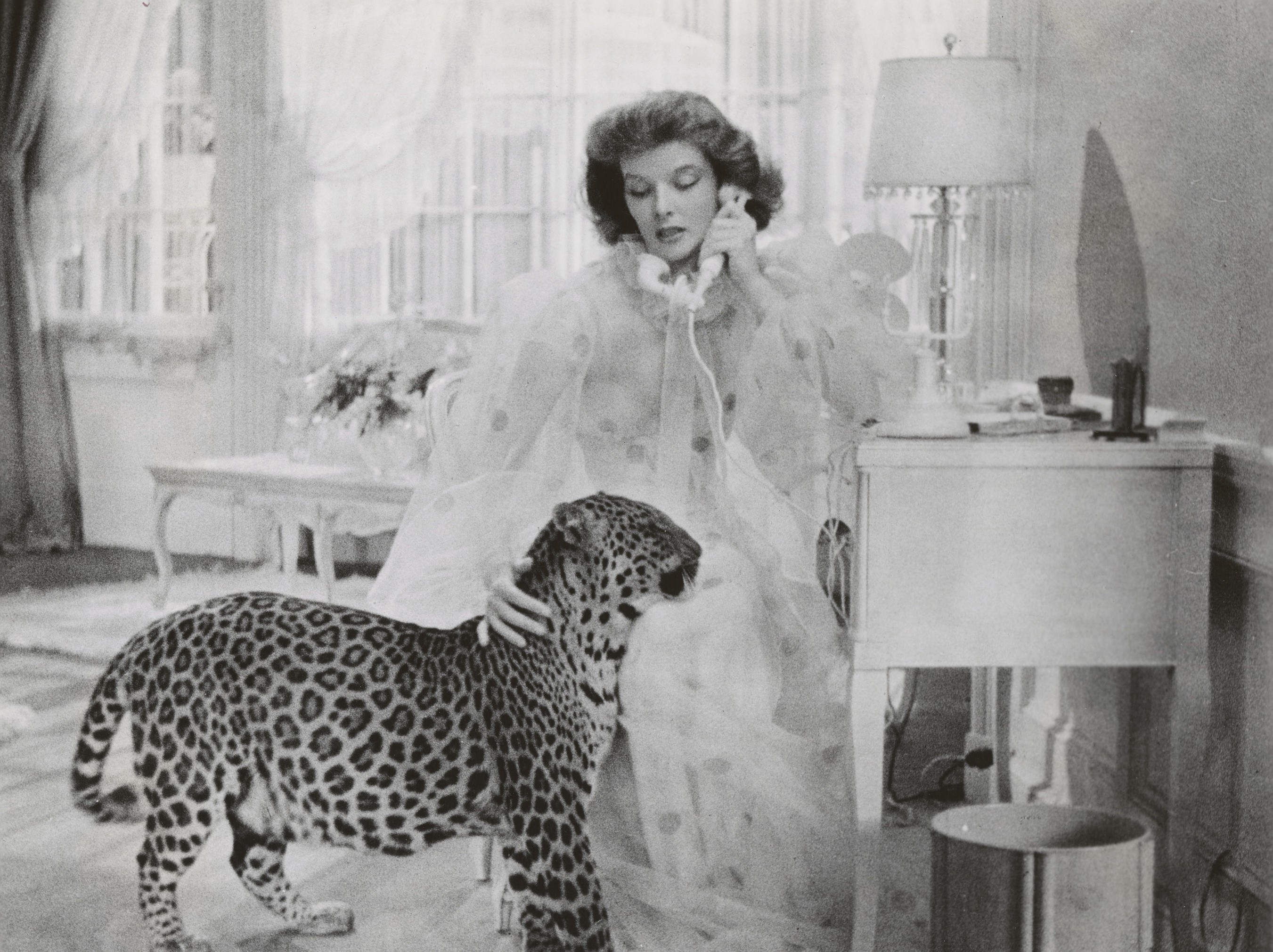 What I Learned from Katharine Hepburn | by The Academy | ART & SCIENCE |  Medium