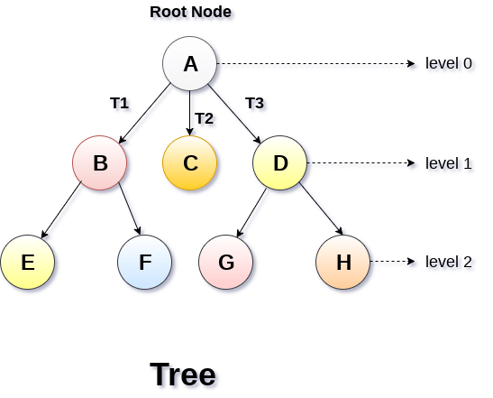 Trees Some Important Notes We Need To Know By Anny S Blog Medium