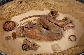 Naturally mummified body from Ancient Egypt.