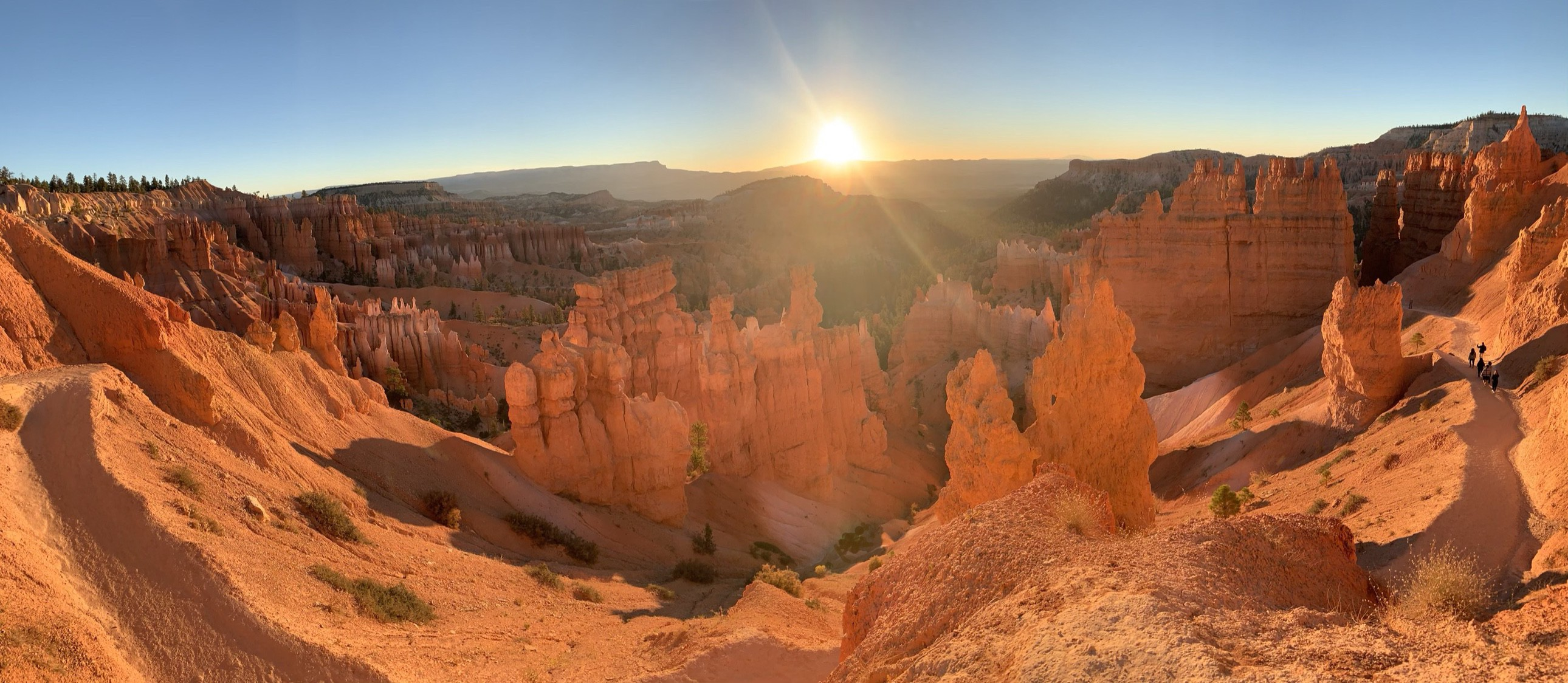 Why The Iphone Xs Is The Only Camera You Need On Your Next