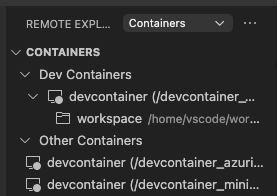 Viewing Docker containers running on the remote host