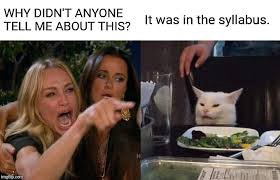 """""""Woman and cat"""" meme. Woman: """"Why didn't anyone tell me about this?"""" Cat: It was in the syllabus."""""""