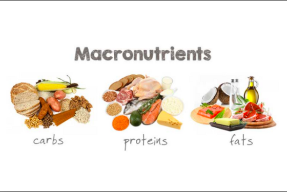 Macronutrient Dieting