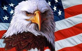 A mean looking eagle in front of the American flag just spoiling for a fight