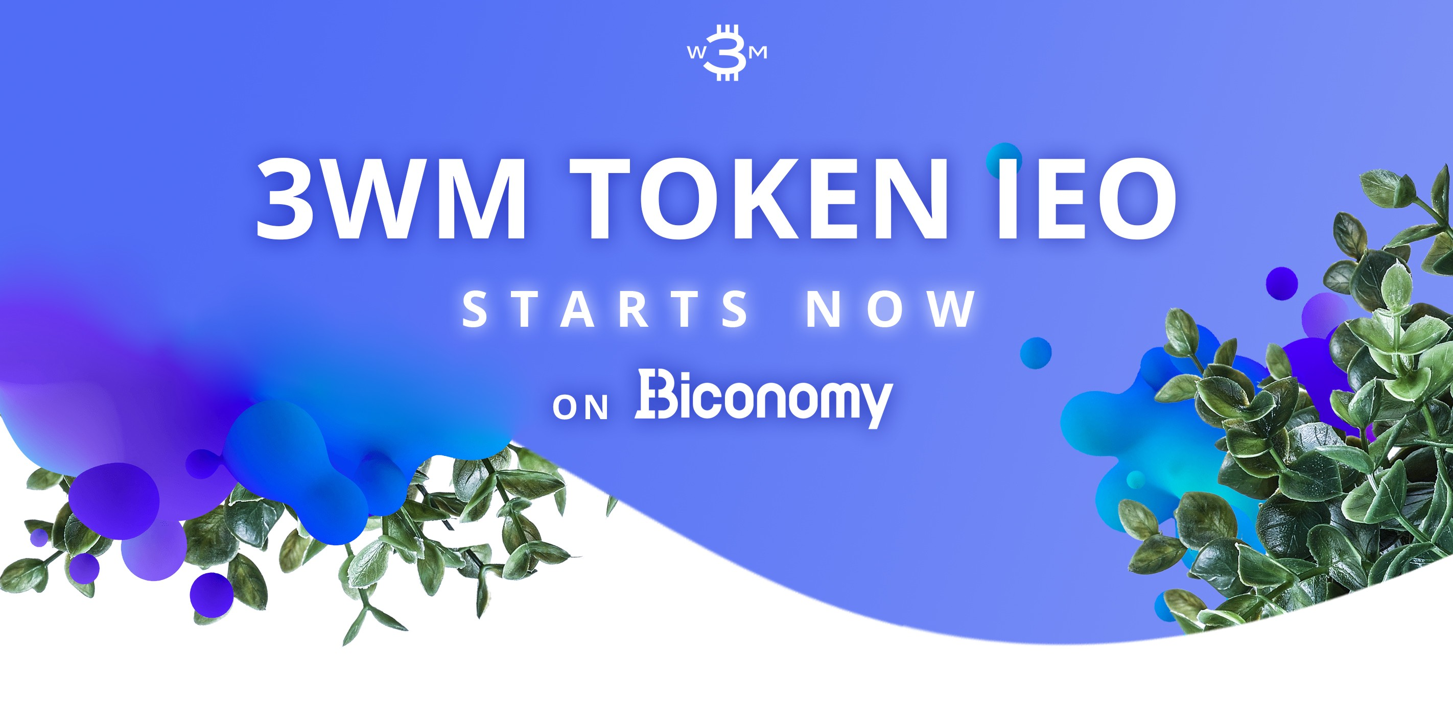3WM Token IEO Starts on Biconomy!
