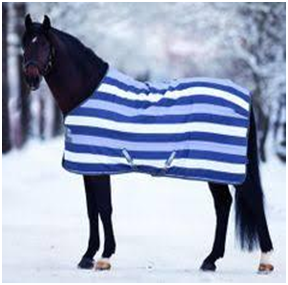 Horse Rugs For Turner Equestrian