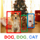 Two dogs with a cat sitting on the floor selected with bounding boxes