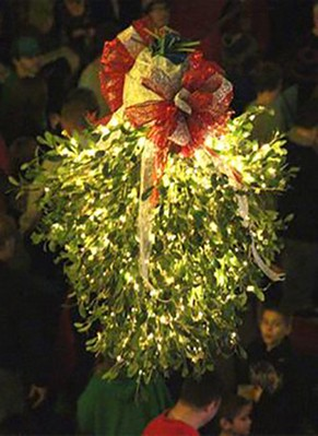 What To Know About Mistletoe Facts And Mythology Mariecor