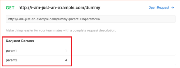 How request params input values are rendered in documentation