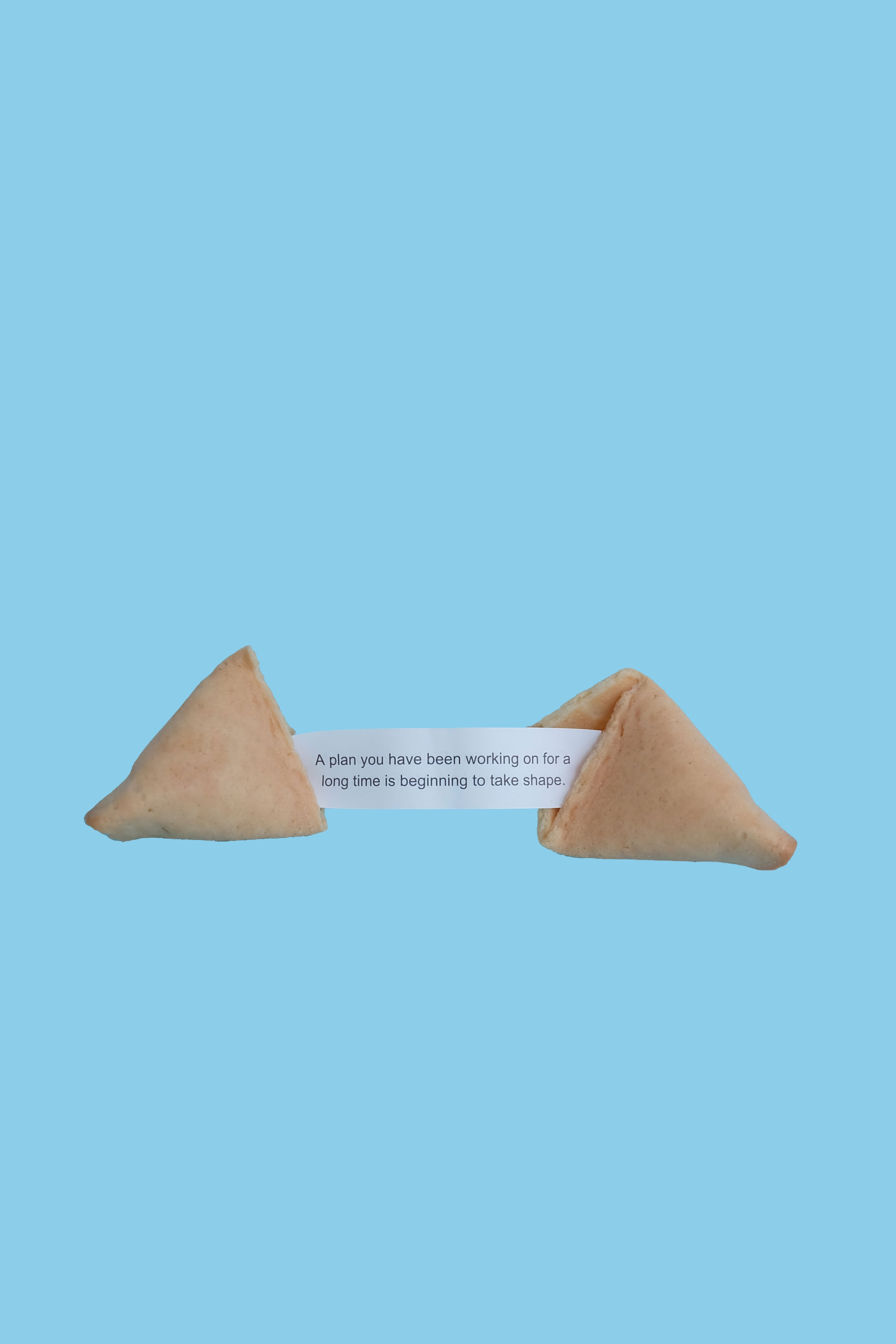 A fortune cookie: A plan you have been working on for a long time is beginning to take shape.
