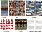 The synthesized results by energy-based generative ConvNet family