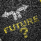 Two arrows pointing in opposite directions, with the word Future and a question mark below it.
