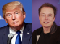 Elon Musk and Donald Trump — Wikimedia commons