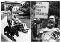 """In the first photo: Ed Roberts on the Berkeley Campus In the second photo: Ed Roberts at a protest holding a sign which reads """"civil rights for disabled."""""""