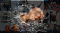 A collage of women working across industries overlaid by a fist punching a glass ceiling