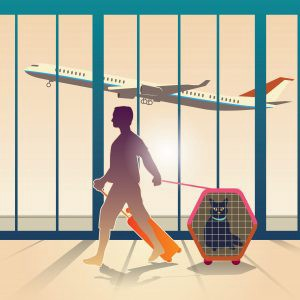 illustration of a man walking through an airport with a cat in a carrier