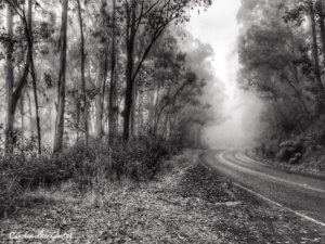 black and white smartphone photography