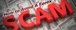 forex_trading_scams
