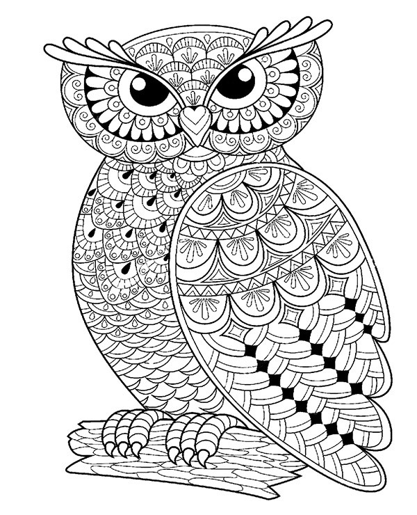 Coloring Books For Toddlers | Coloring Pages | 740x600