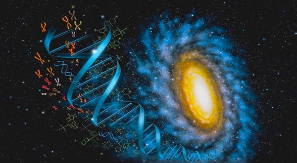 Why we may find proof of aliens in our DNA instead of the stars