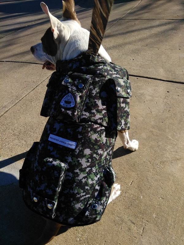 3 Significant Reasons to choose Service dog weight vest