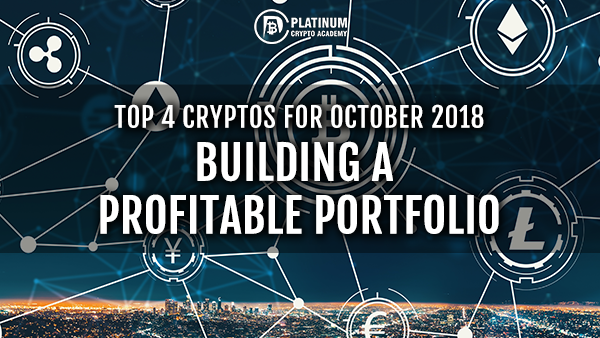 Cryptocurrency long term portfolio