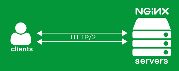 Nginx-more :: Get HTTP/2 with ALPN, PageSpeed, ModSecurity
