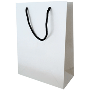 Top 5 Alternative to Plastic Shopping Bags