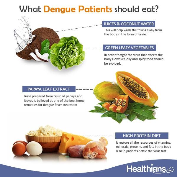 What should Dengue Patients eat? - Healthians - Medium