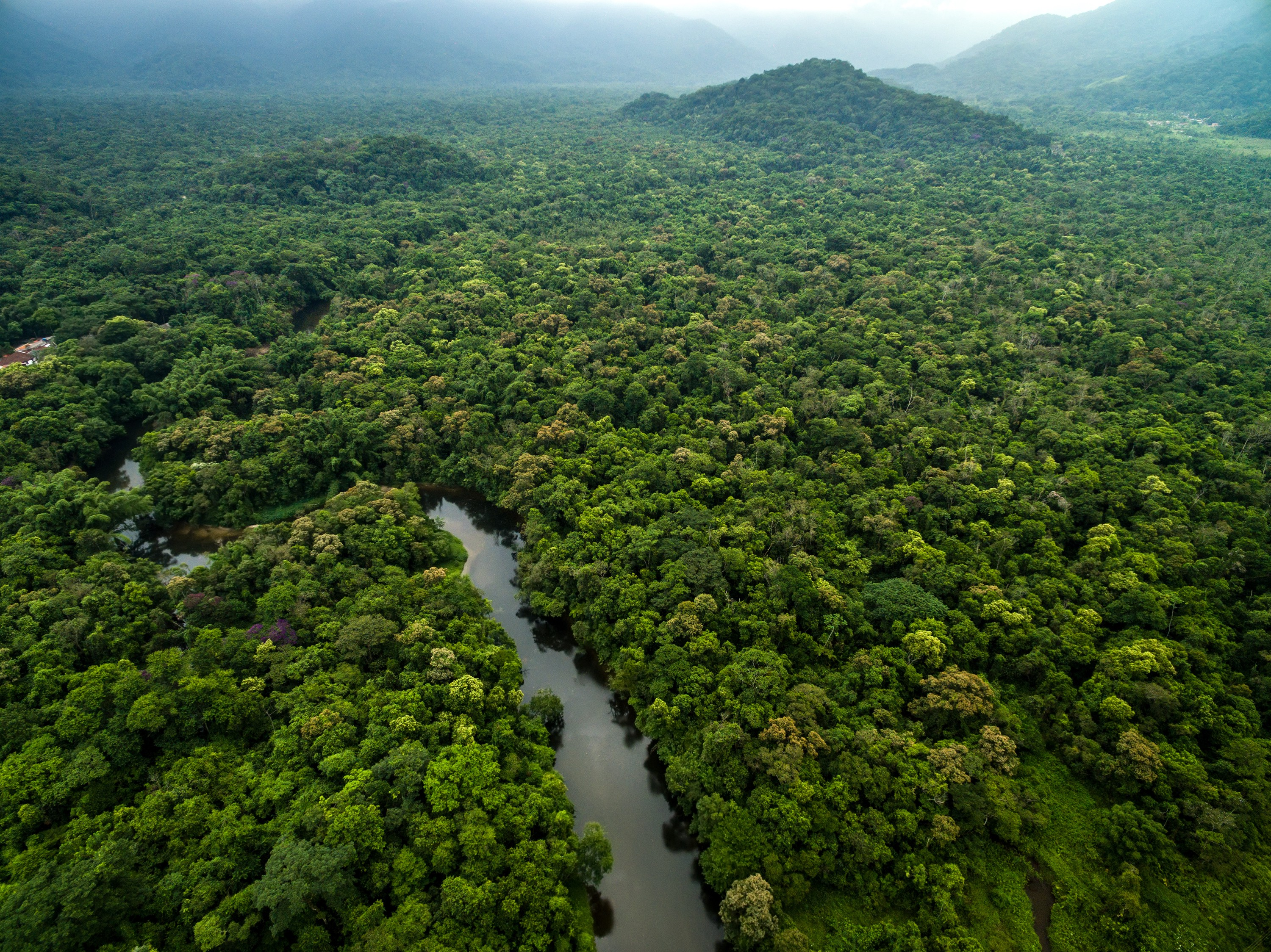 An aerial view of the Amazon Rainforest, Amazon River and surrounding mountains