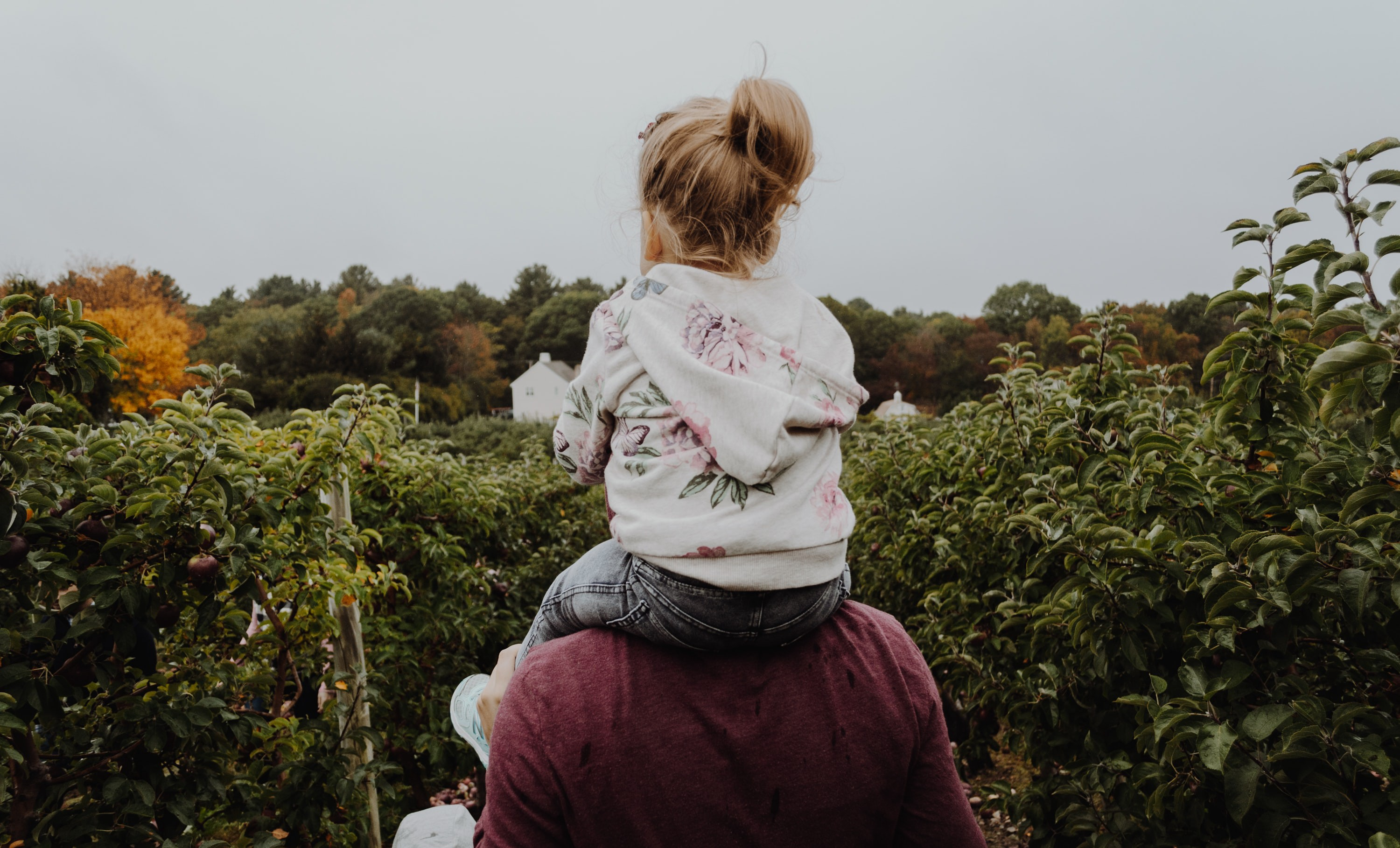 A kid on someone's shoulders.