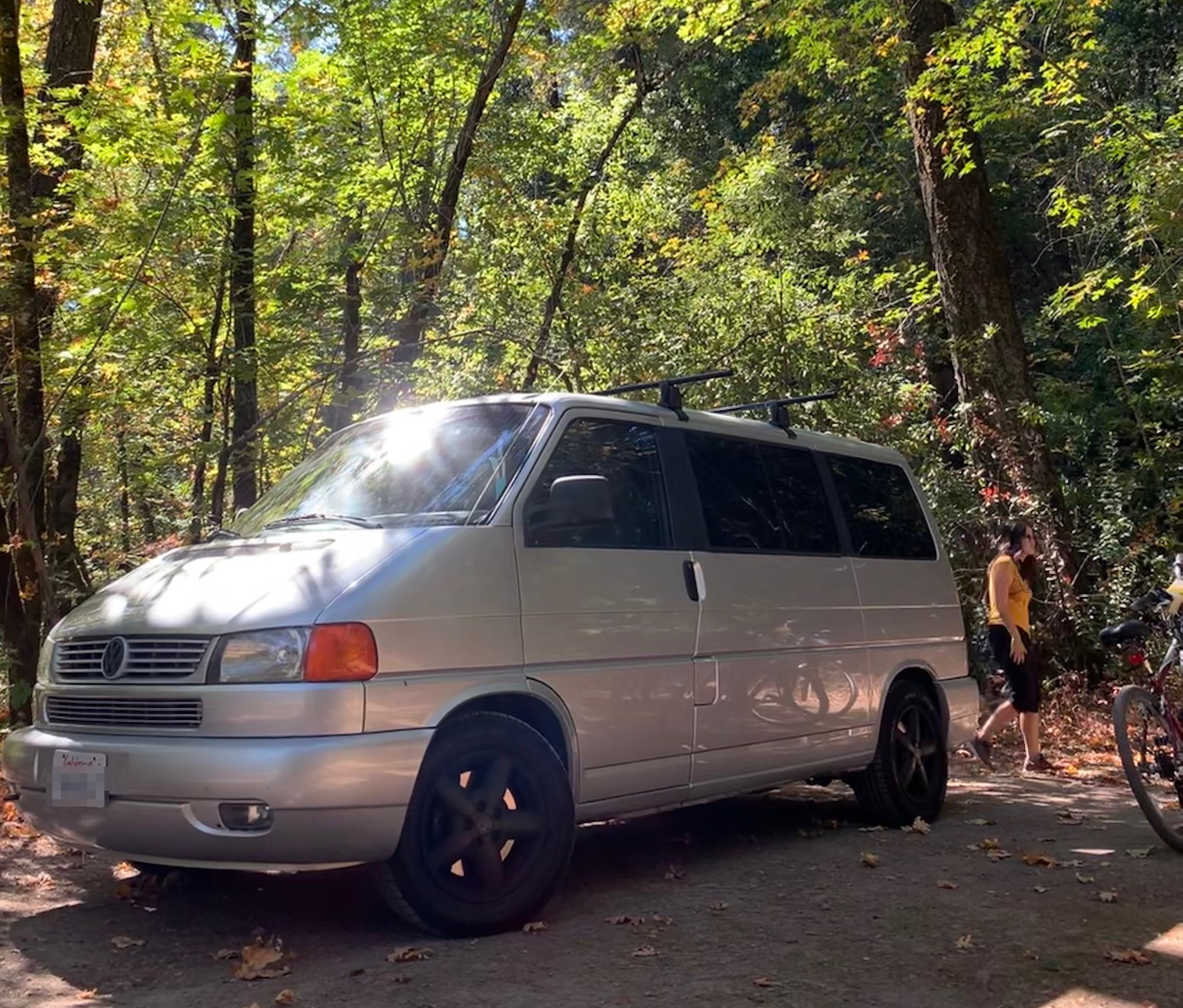 Van in campsite underneath soaring trees