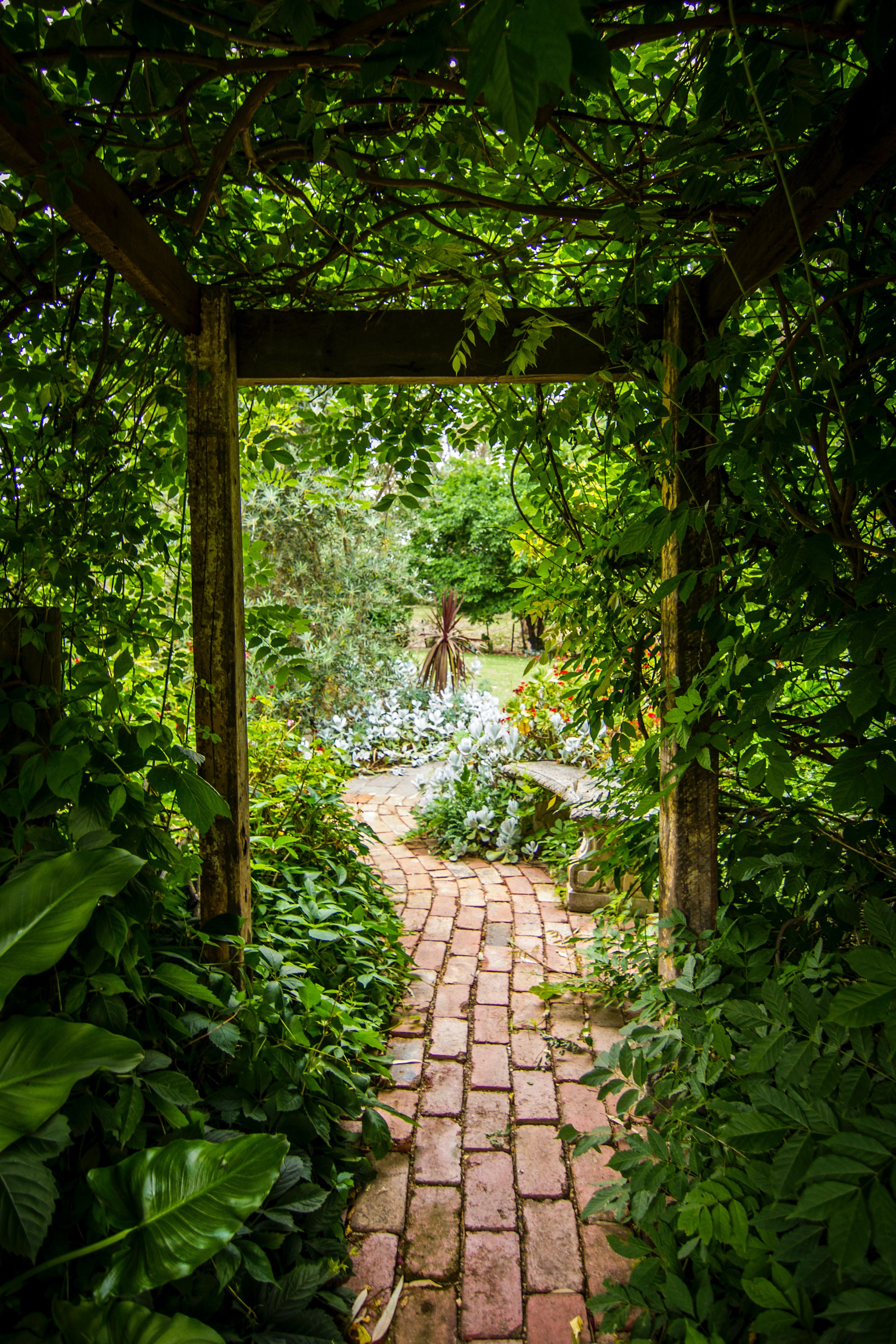 A brick pathway leading to a lush, green garden.