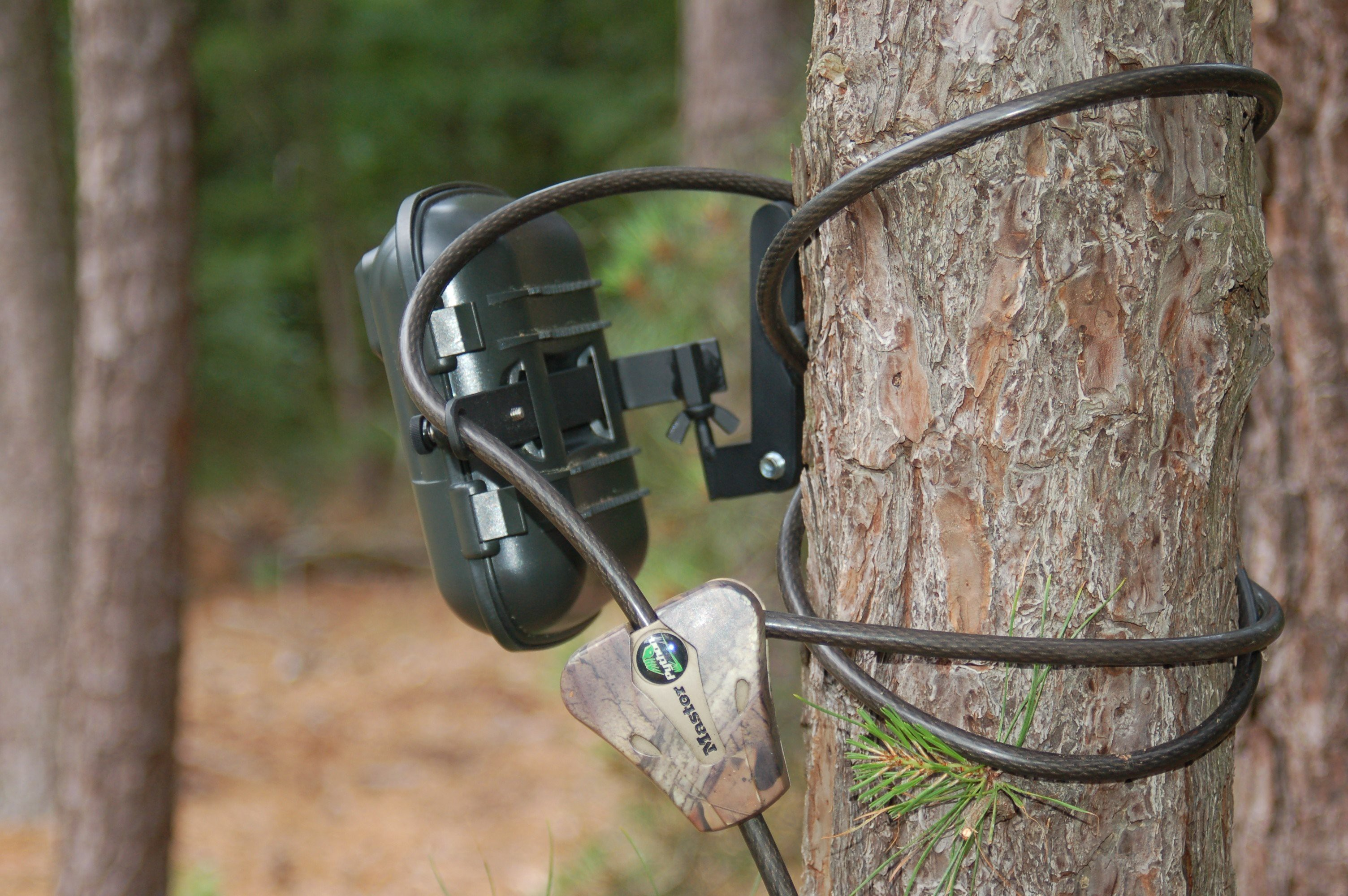 trail cameras secure