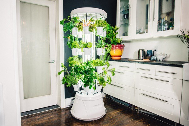 Introducing Nutritower 2 — Advanced Hydroponic Indoor ...