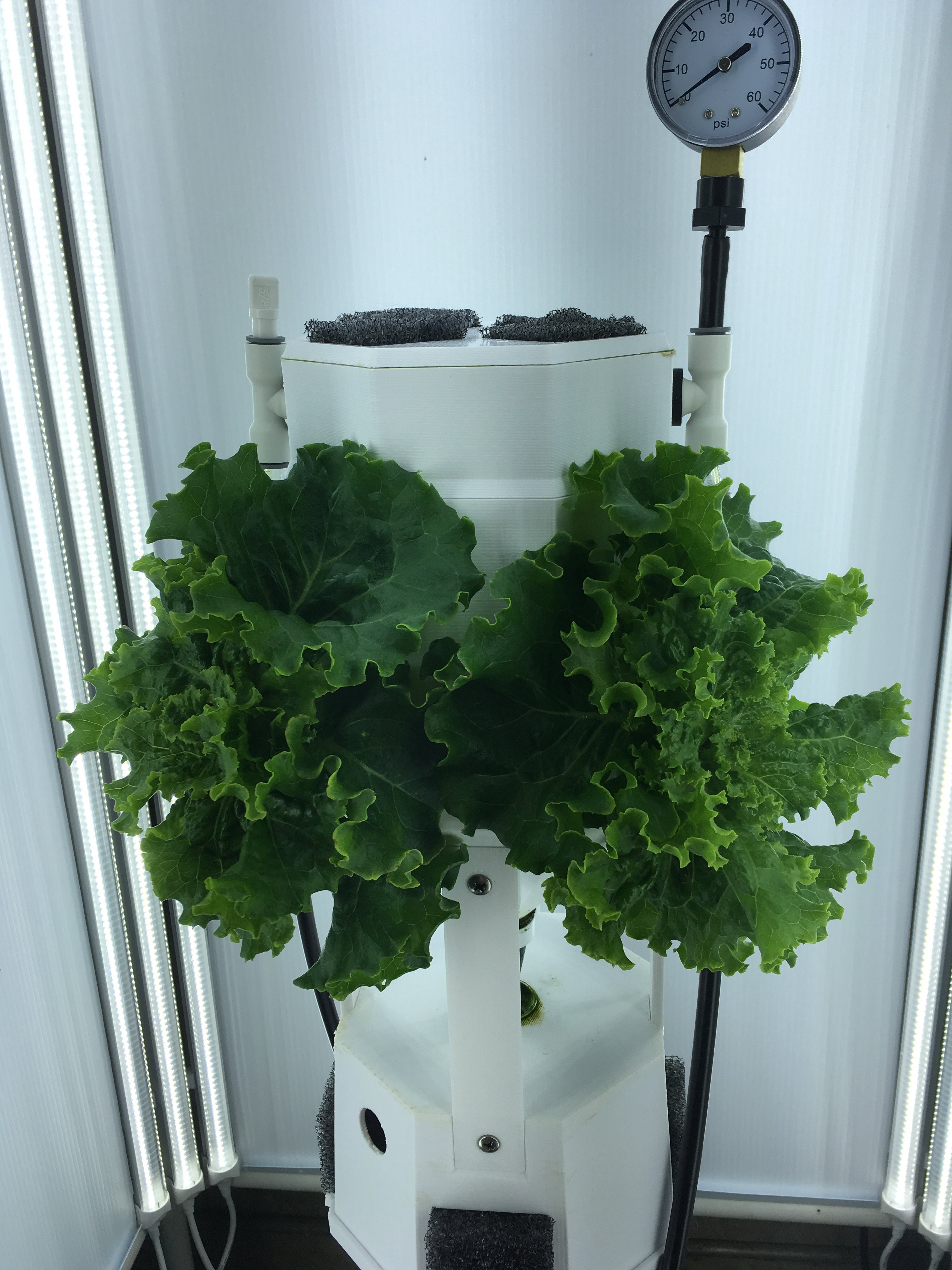 Grow Your Own Vertical Farm in This DIY, Raspberry Pi