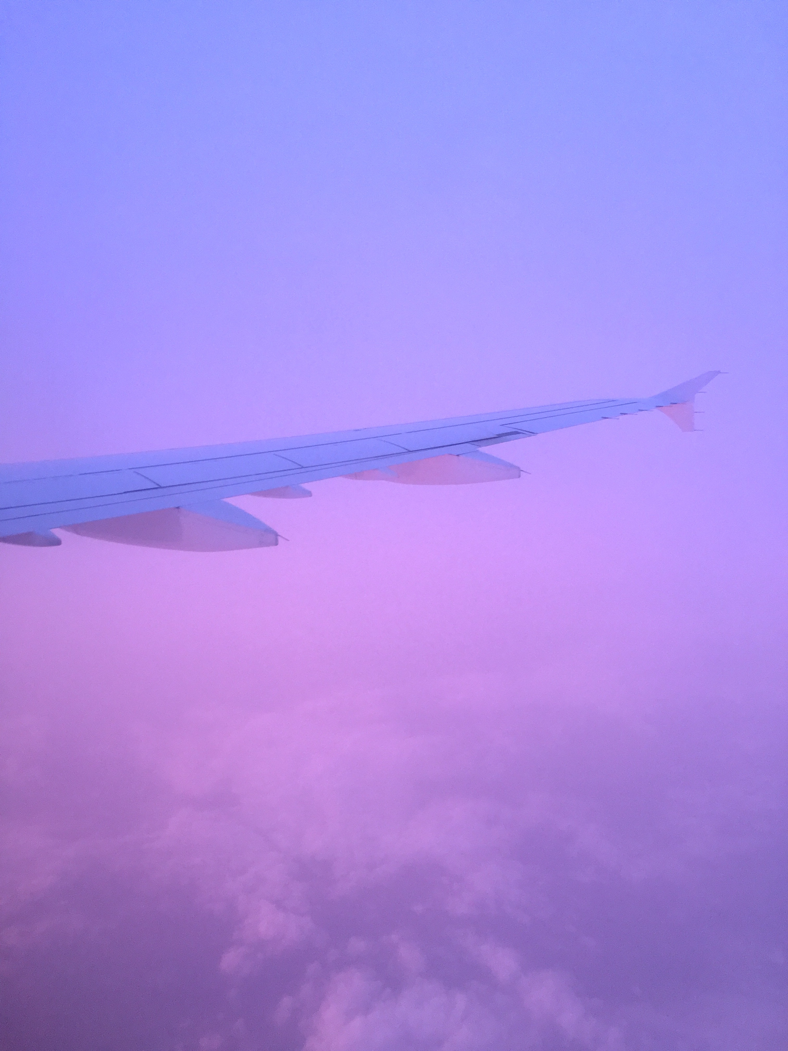 Find An Airline You Like Stick With It By Nicole Banister Medium