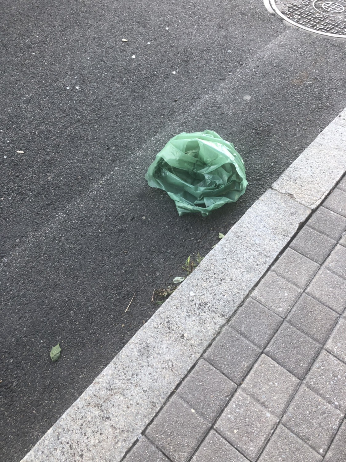 """A """"reusable"""" plastic bag flies on the streets the day after they are introduced for the bag """"ban"""""""