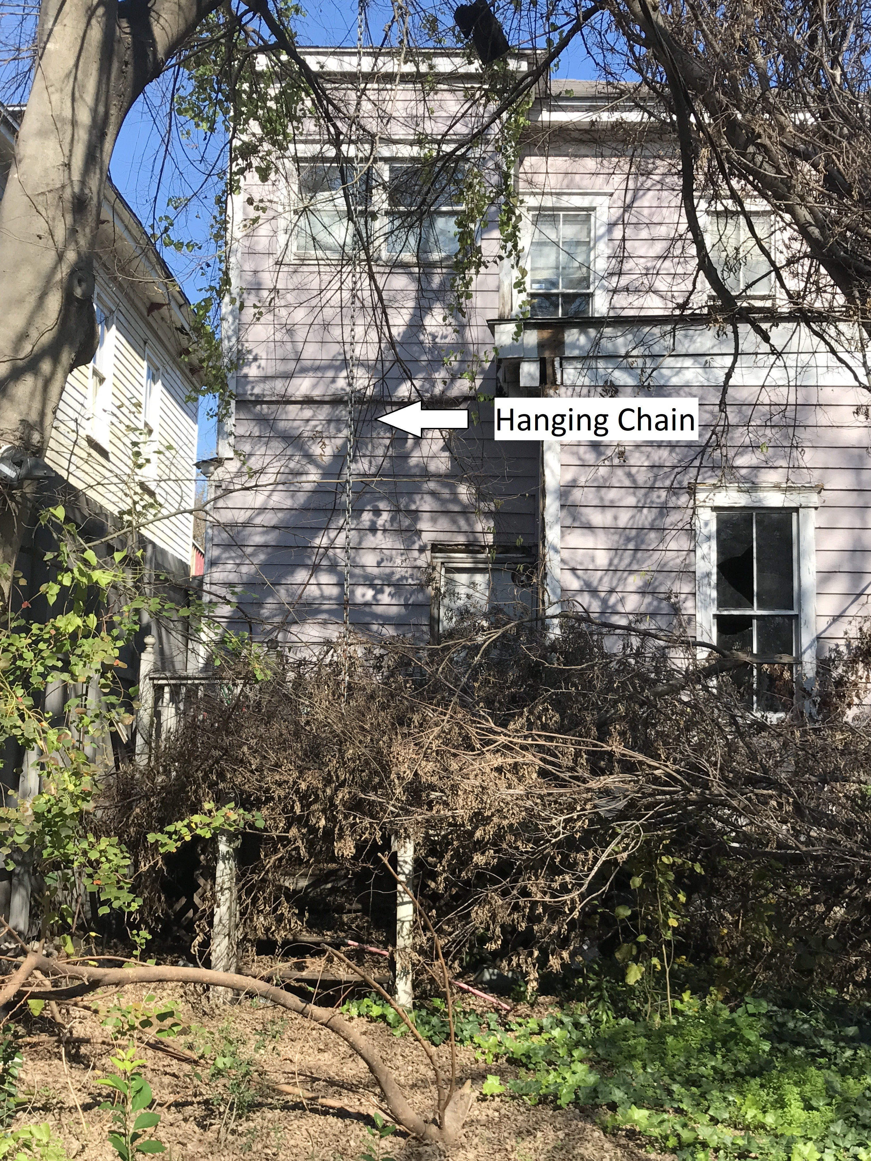 Overgrown backyard with chain hanging from tree