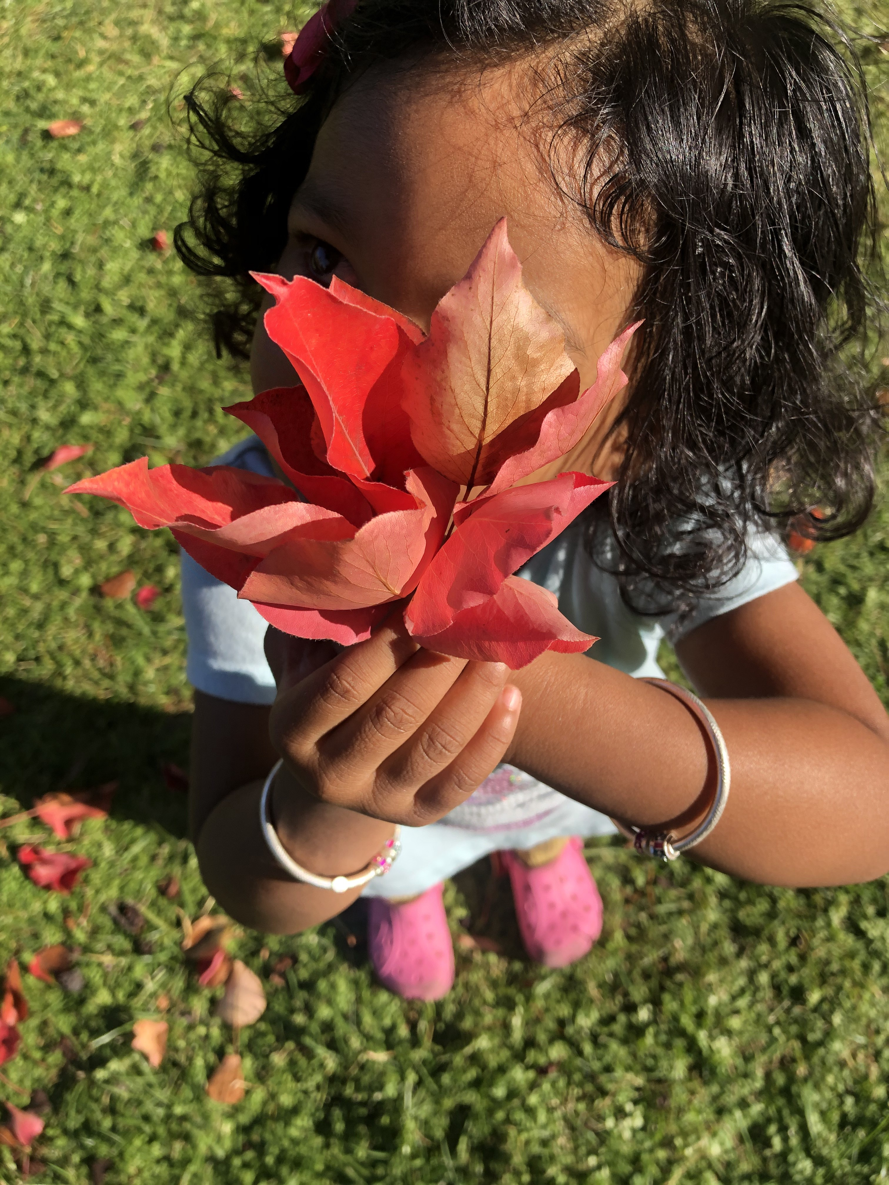 My toddler with the Fall flowers. Pic credit: Anushka Bhartiya