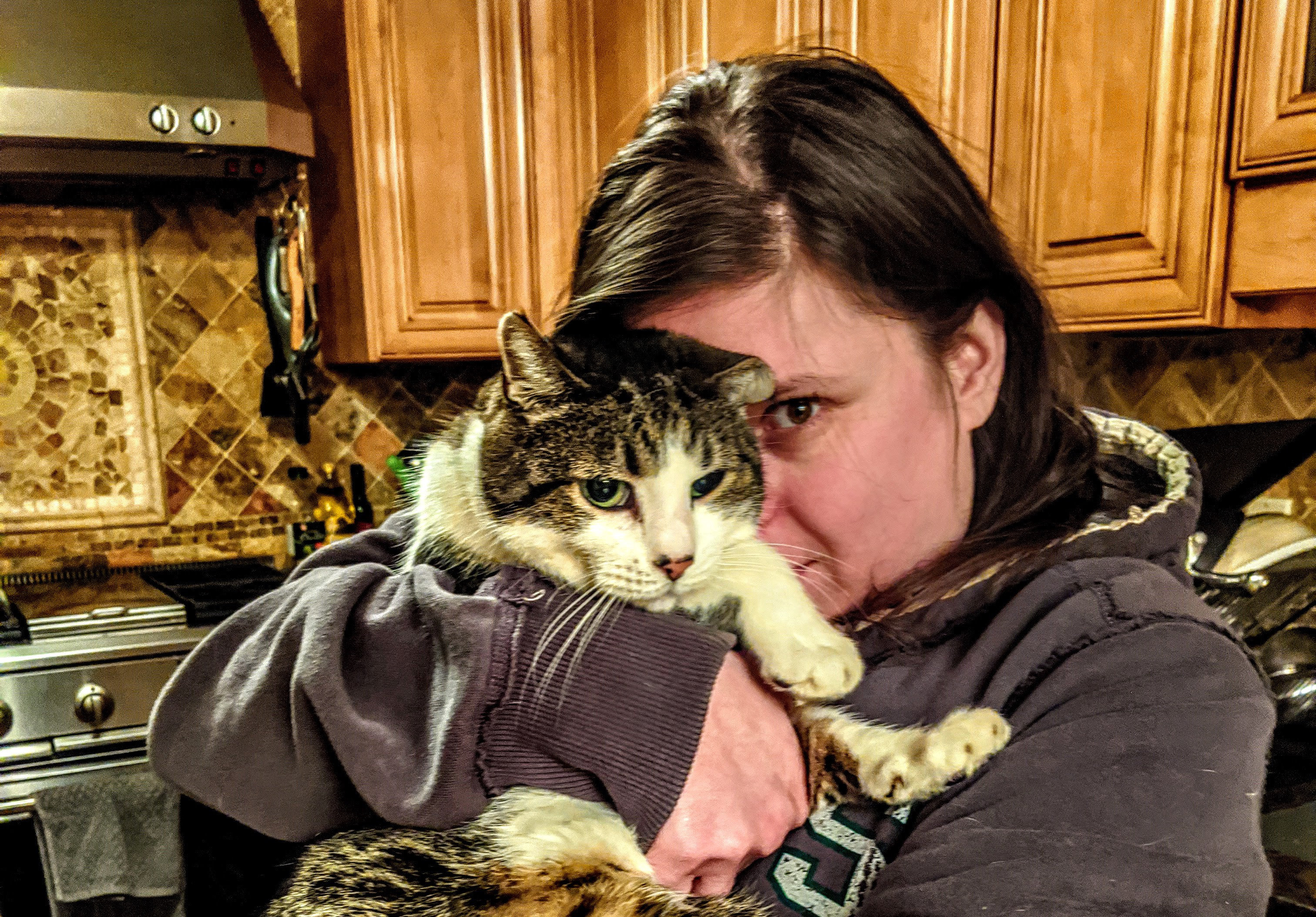 A lovely lady holding a handsome cat