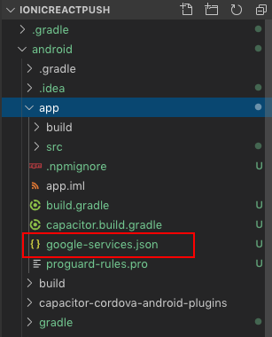 Add google-services.json in your ionic-react capacitor project