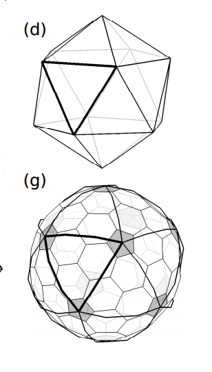 Mathematicians Solve The Topological Mystery Behind The