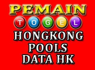 Image result for data hongkong